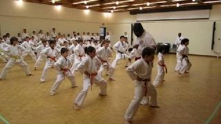 Purple Dragon Academy - Kitsilano Branch in Vancouver