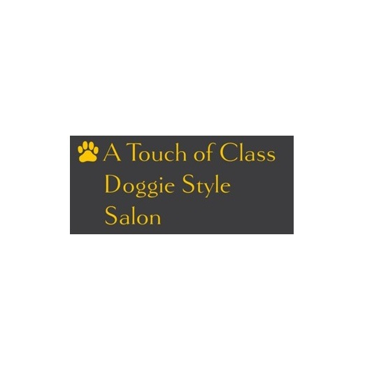A touch of class doggie style salon in evansville in for A touch of class pet salon