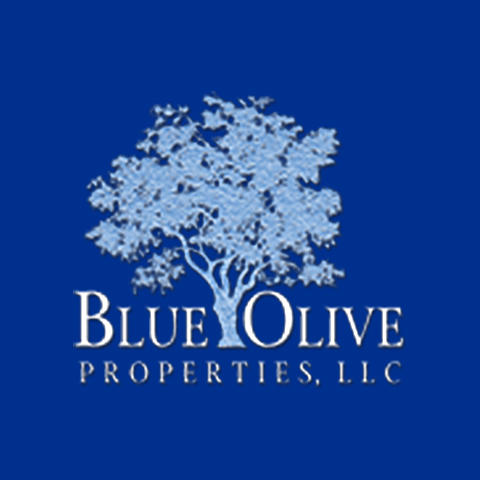 Blue Olive Properties