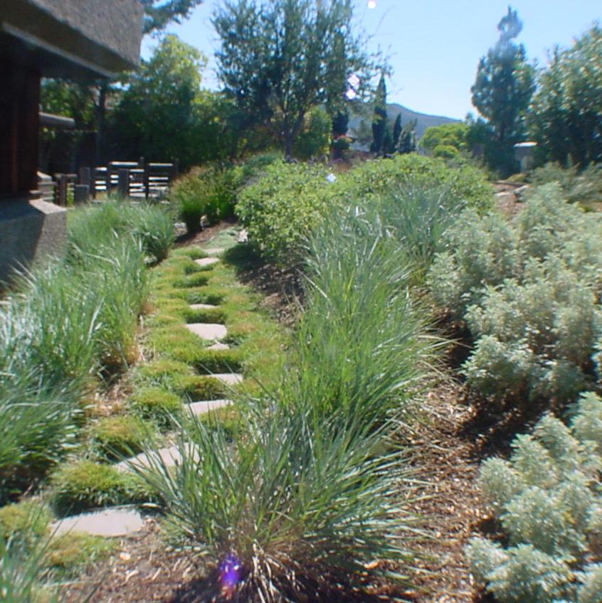 All Seasons Gardening & Landscaping image 8