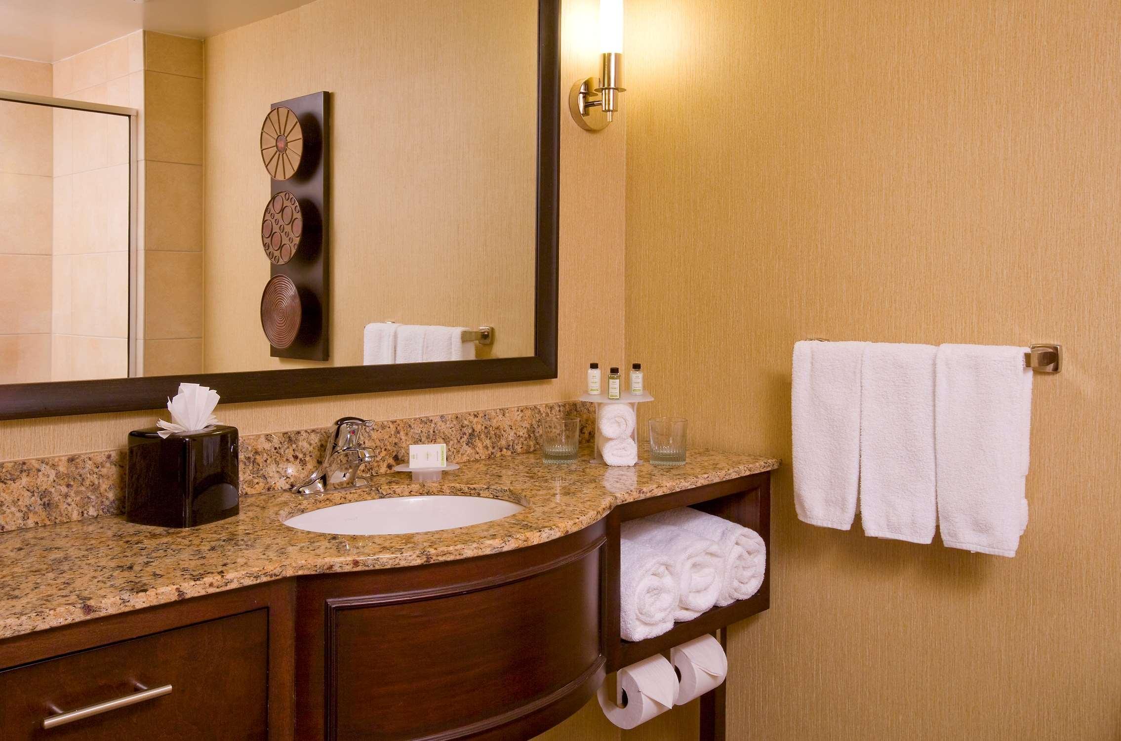 Embassy Suites by Hilton Houston Energy Corridor image 26