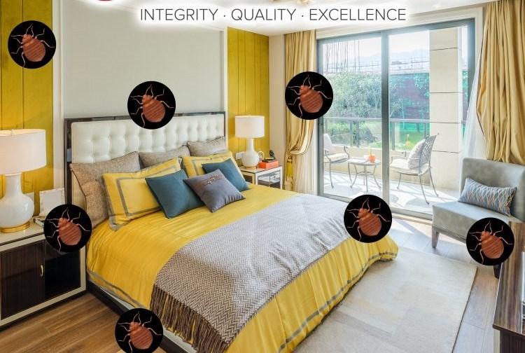 TLC Bed Bugs K-9 Inspection Service image 7