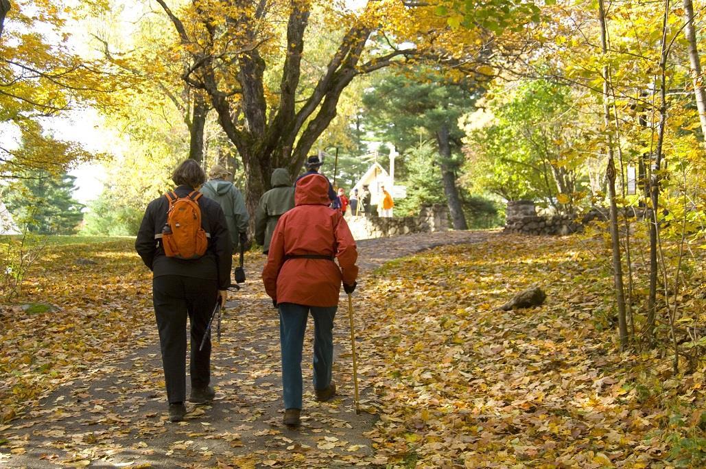 Best Western Plus Gatineau-Ottawa à Gatineau: Gatineau Park
