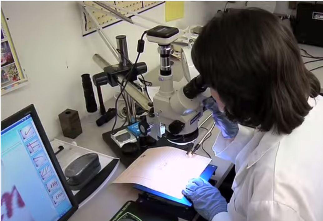 Forensic QDE Lab image 0