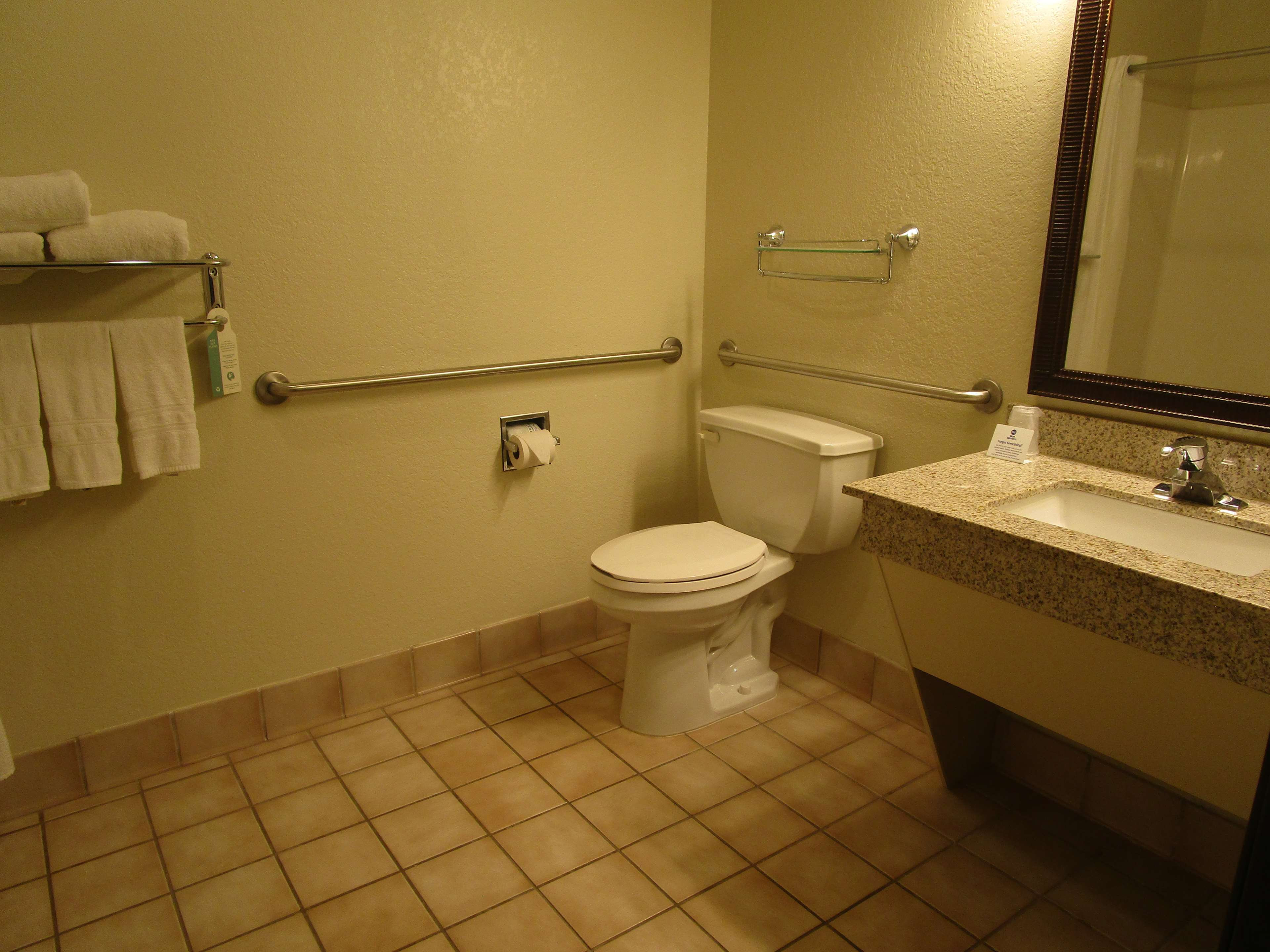 Accessible Roll-in Shower Guest Room