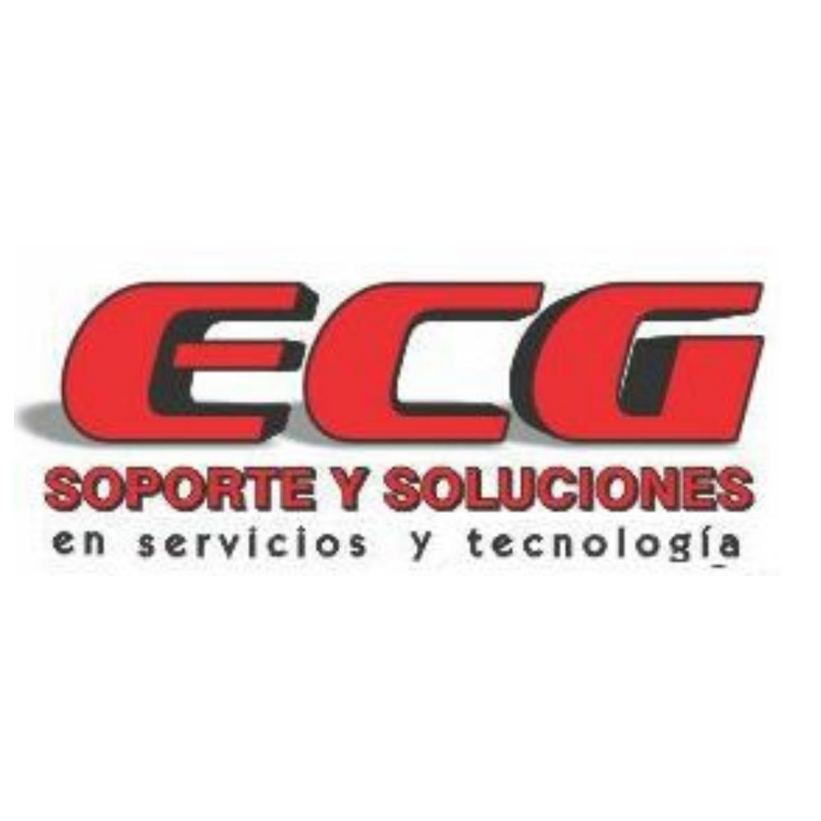 Ecg Soporte y Soluciones en Servicios y Tecnología