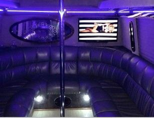 Elite Luxury Bus image 2