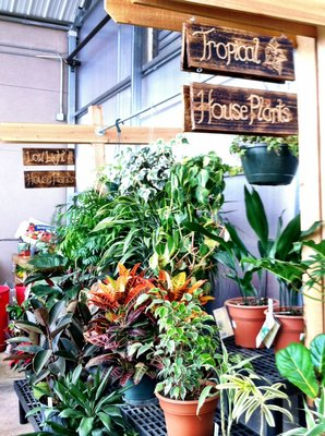 Mile High Ace Hardware & Garden image 1