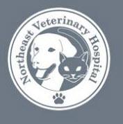Northeast Veterinary Hospital - Peabody, MA 01960 - (978)538-3636   ShowMeLocal.com