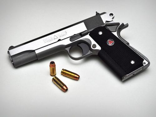 The Gun Collection image 1