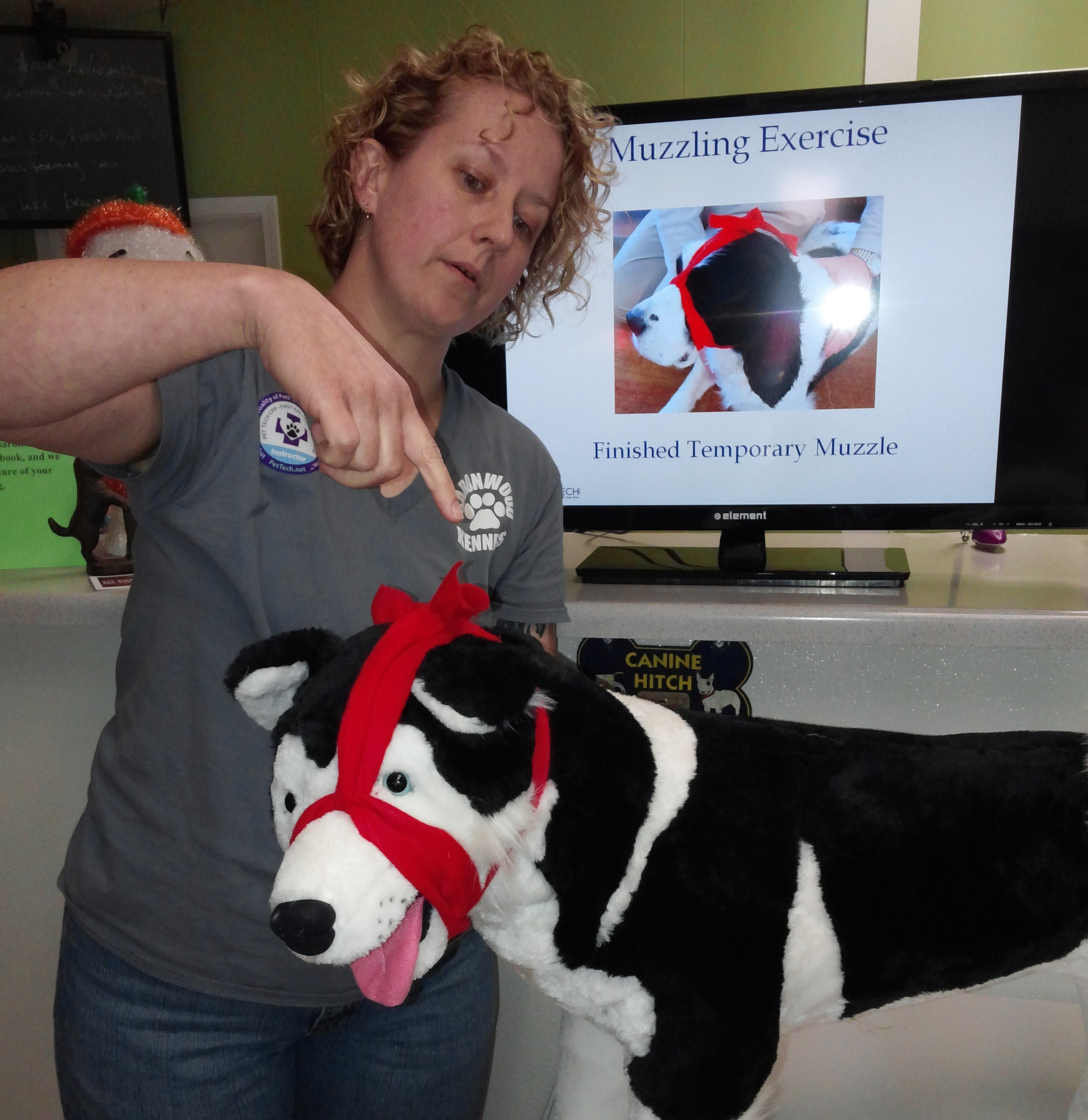 Midwest Pet CPR and First Aid image 0