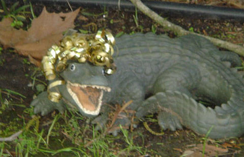 New Orleans KOA image 6
