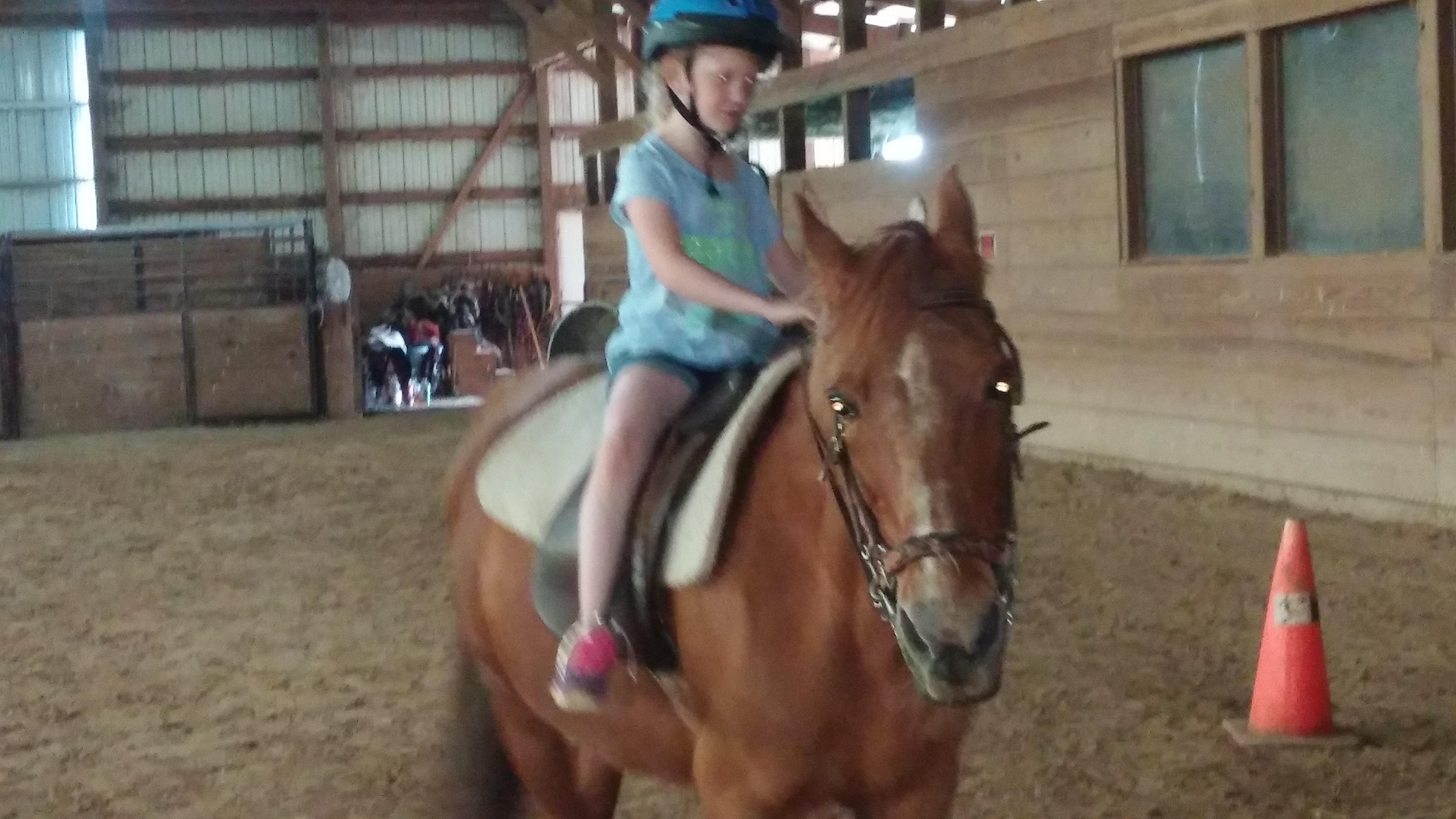 Wright-Way Equestrian Center Inc. image 0