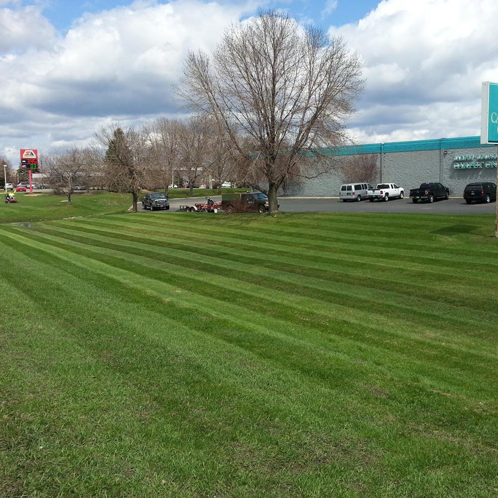 CB Services Lawn, Landscape & Irrigation image 13