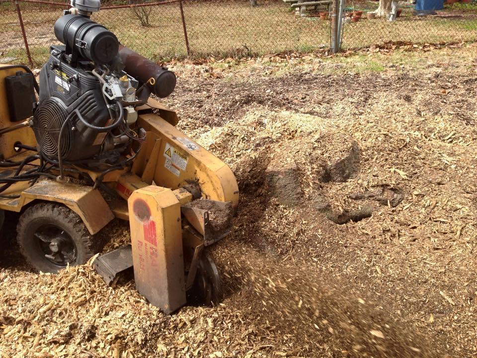 S & L Tree Service & Stump Grinding image 23