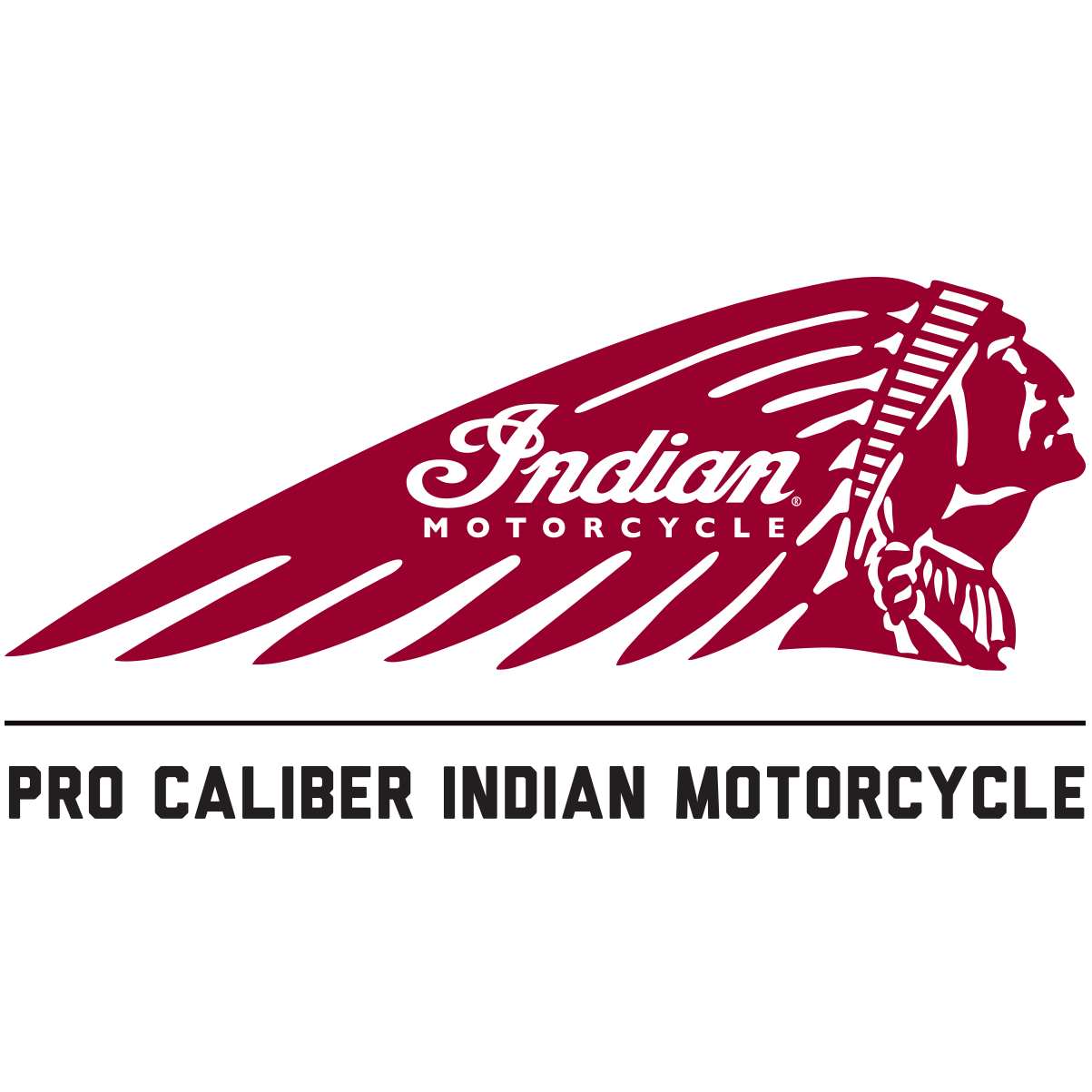 Pro Caliber Indian Motorcycle
