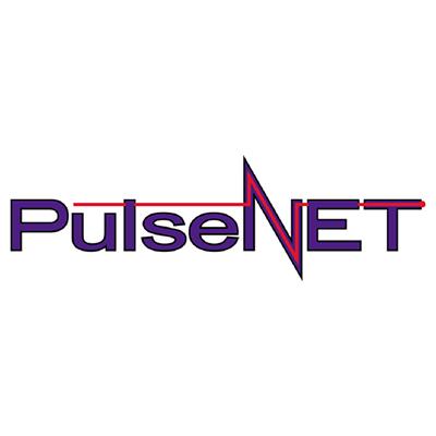 Pulsenet Inc