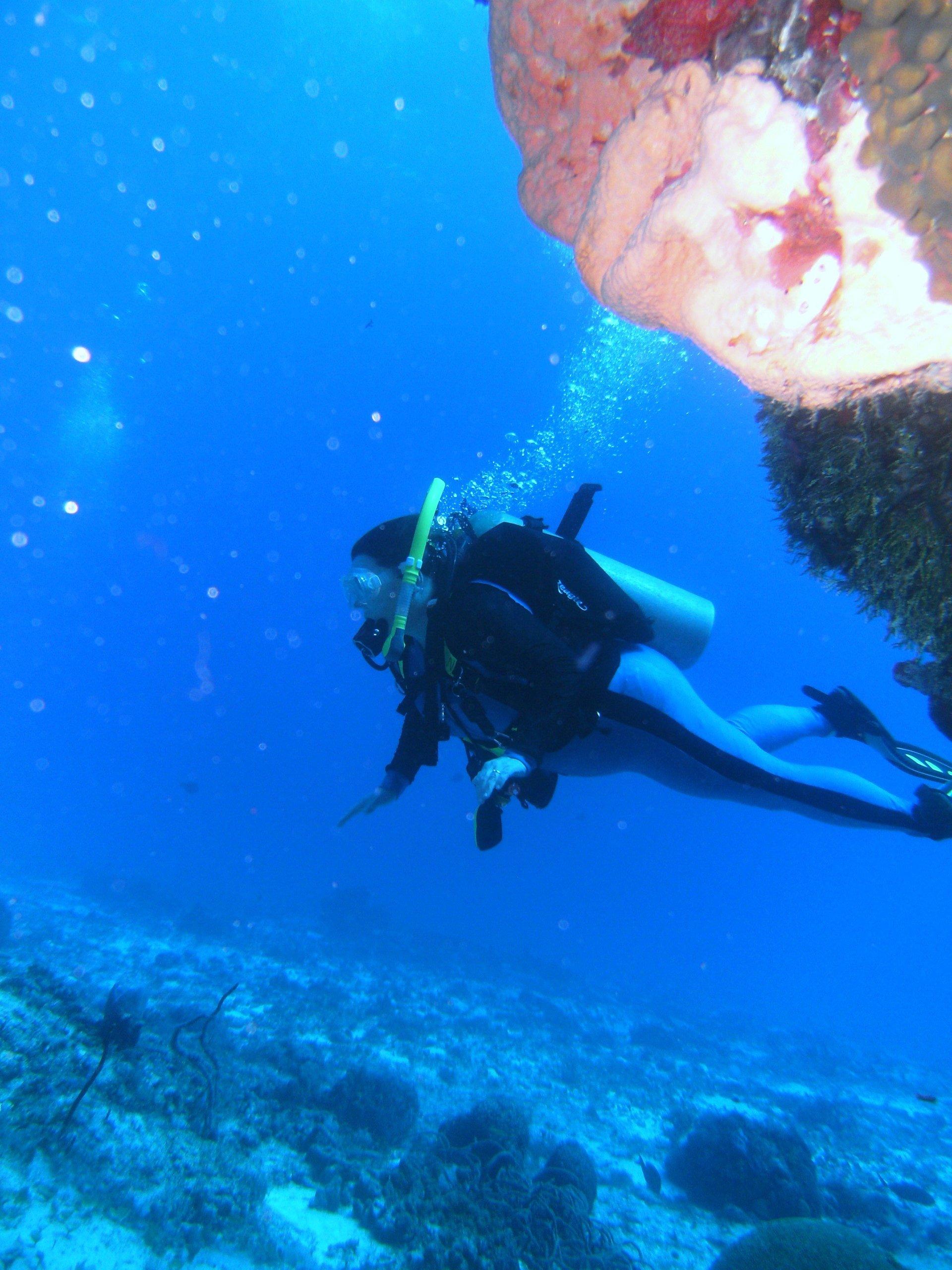 Underwater World Scuba Center image 3