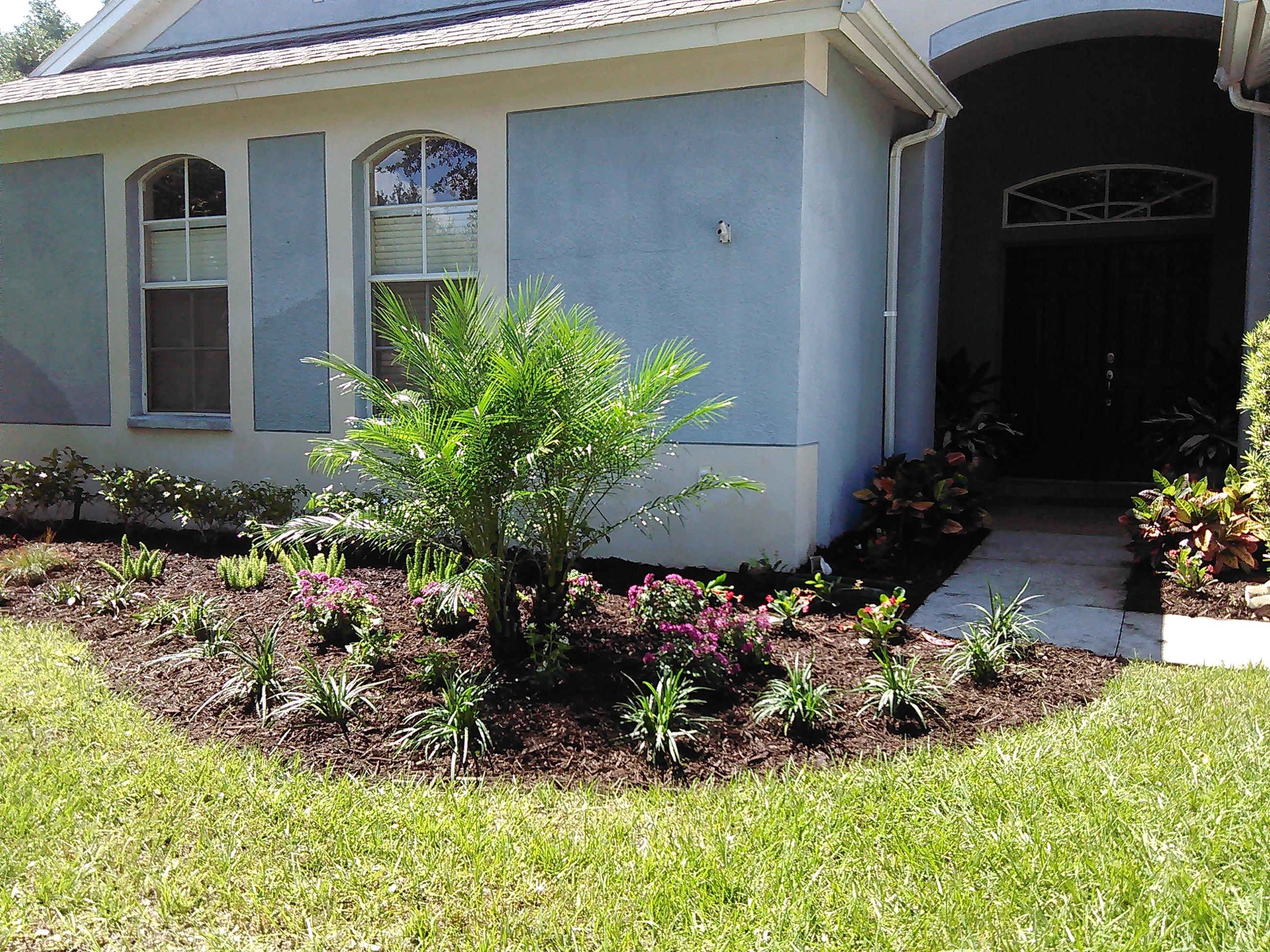 Johns Palms Landscaping image 8