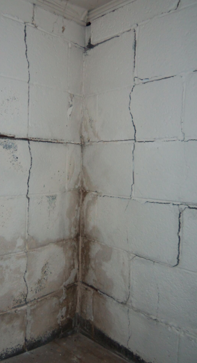 BDry Waterproofing of North Central Ohio image 1