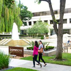 Silicon Valley Center