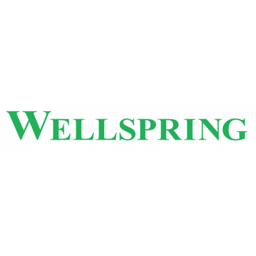 Wellspring Pain Solutions