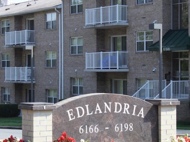 Edlandria image 7
