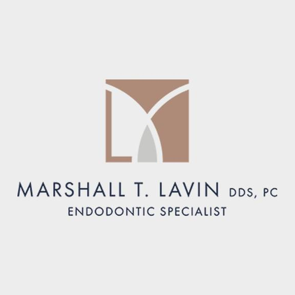 Marshall T. Lavin DDS, PC image 1