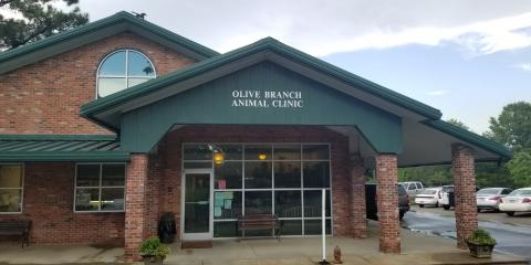 Olive Branch Animal Clinic image 0