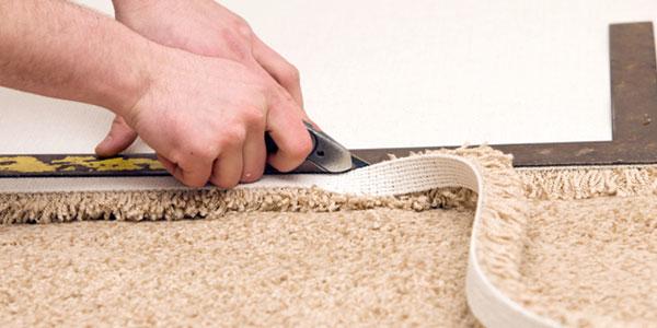 Pelayo's Carpet Cleaning image 3