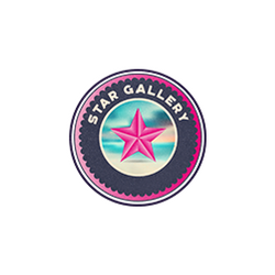 Star Gallery NYC
