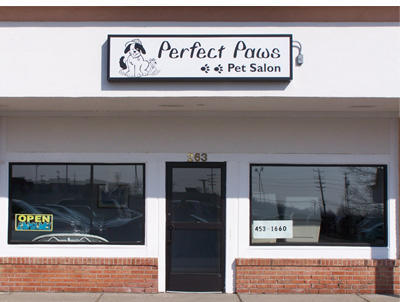 Perfect paws pet salon in plymouth mi whitepages for A perfect pet salon