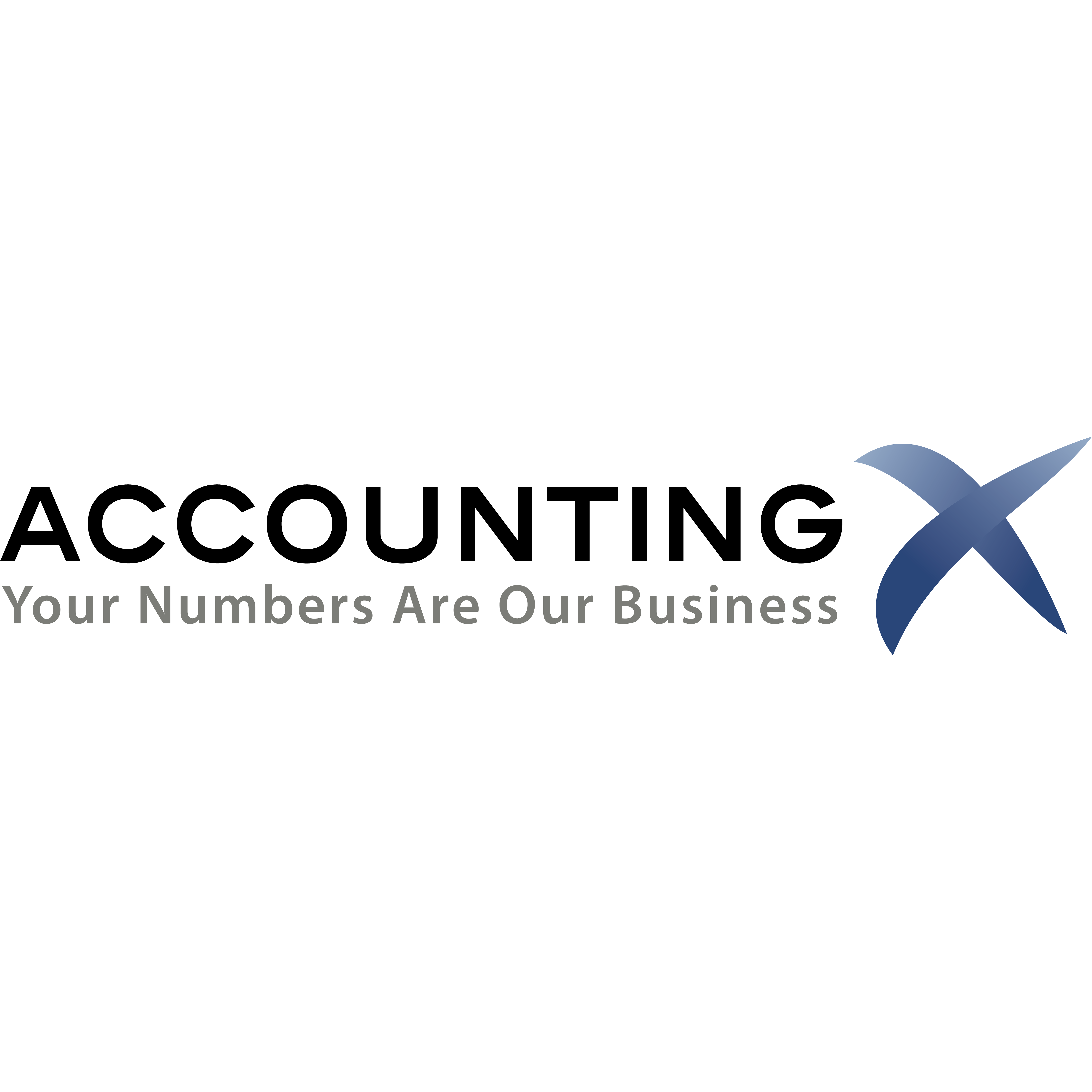 AccountingX