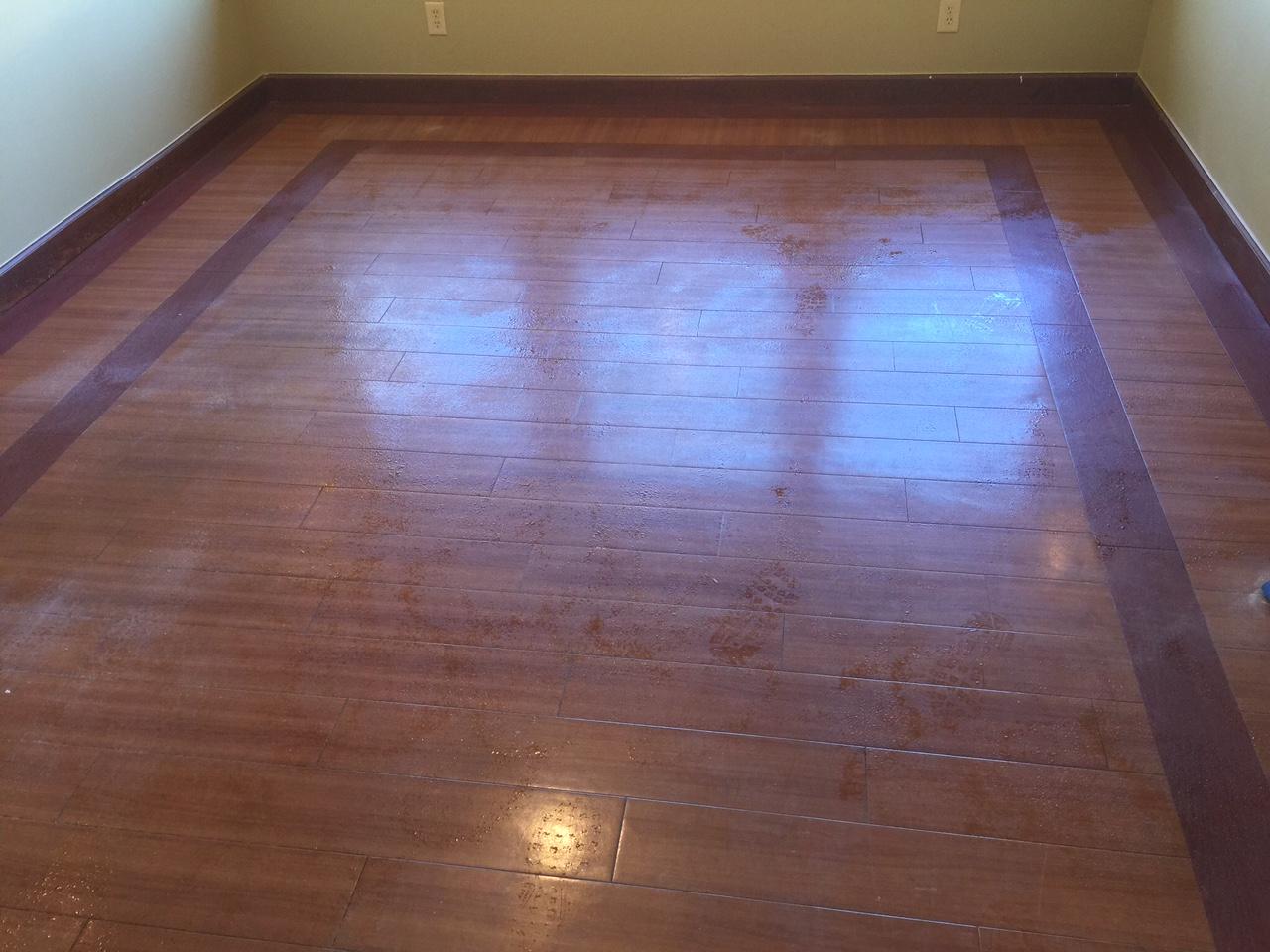 Simply Clean Carpet Care image 5