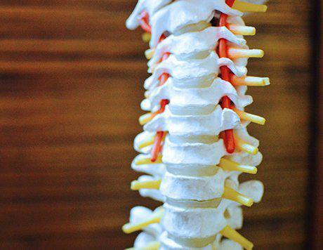 Montgomery Chiropractic image 4