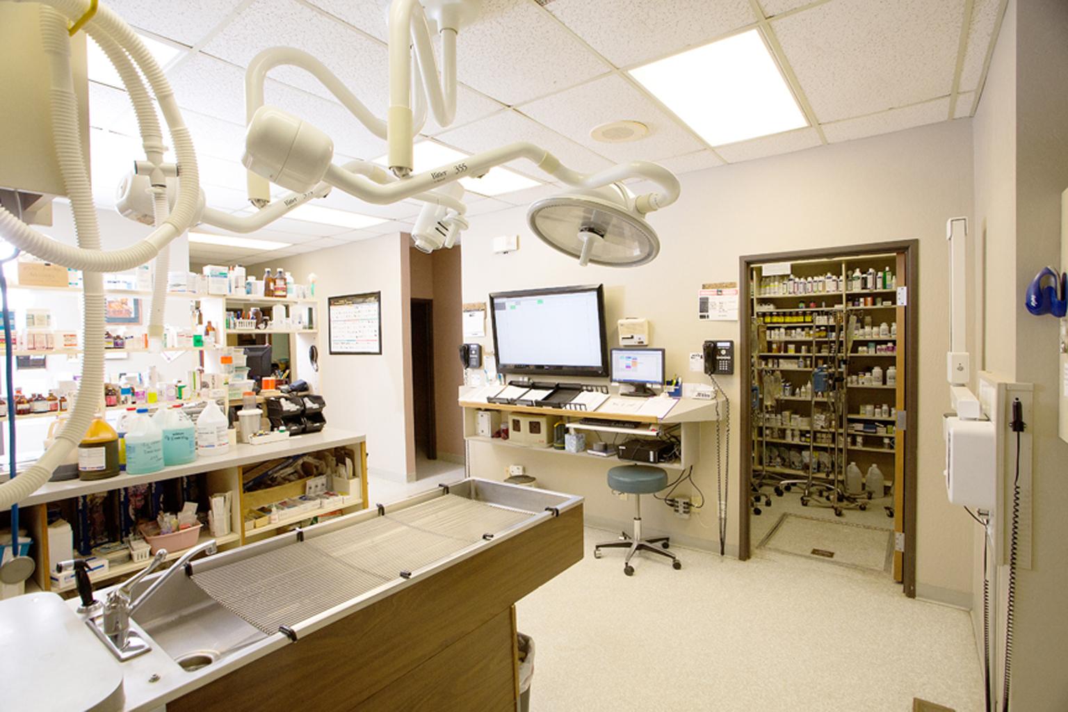 VCA Big Lake Animal Hospital image 5