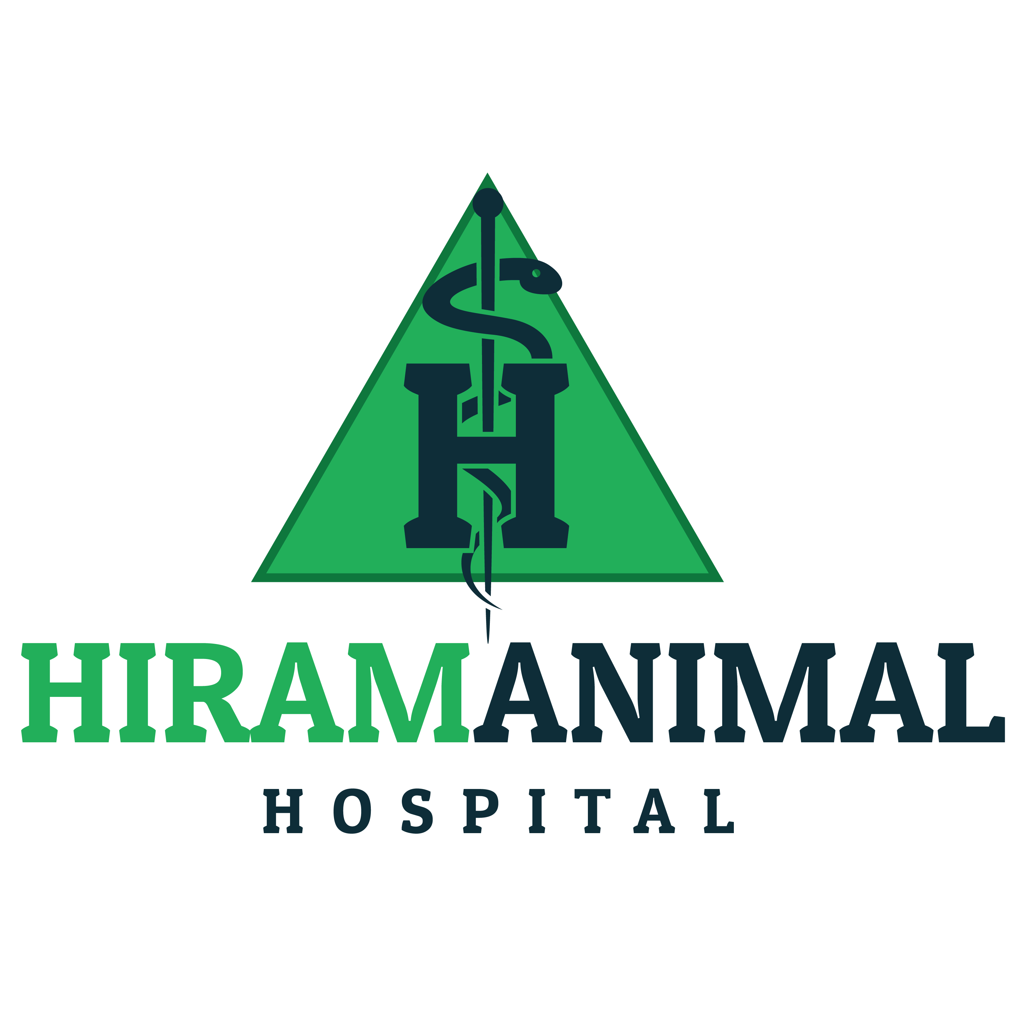 Hiram Animal Hospital - Hiram, GA - Veterinarians