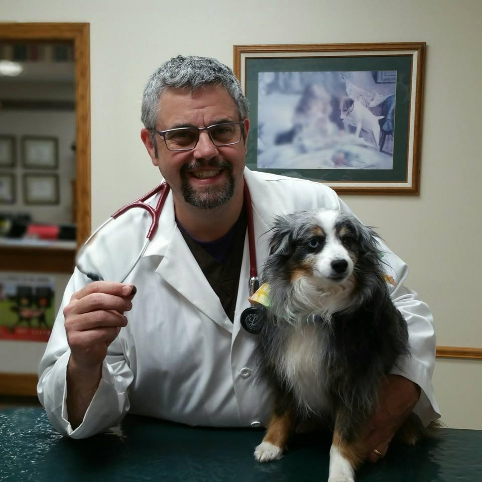 West Wichita Pet Clinic image 5