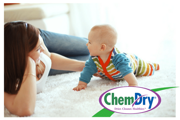 Family First Chem-Dry image 2
