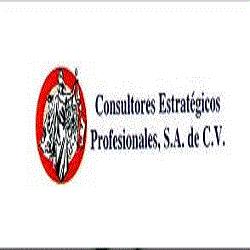 CONSULTORES ESTRATEGICOS PROFESIONALES S.A. DE C.V.