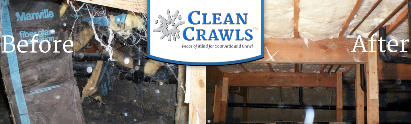 Clean Crawls – Insulation Install & Removal: Seattle image 2
