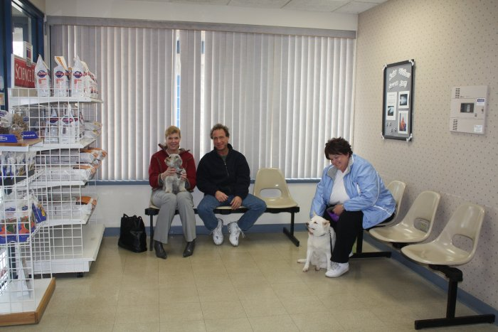 VCA Worth Animal Hospital in Palos Hills, IL, photo #6
