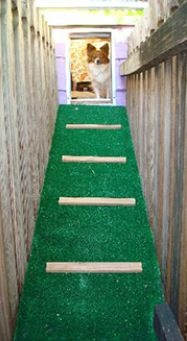 Bark Place Hotel & Pet Grooming image 2