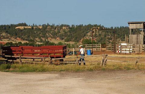 Devils Tower / Black Hills KOA Journey image 8