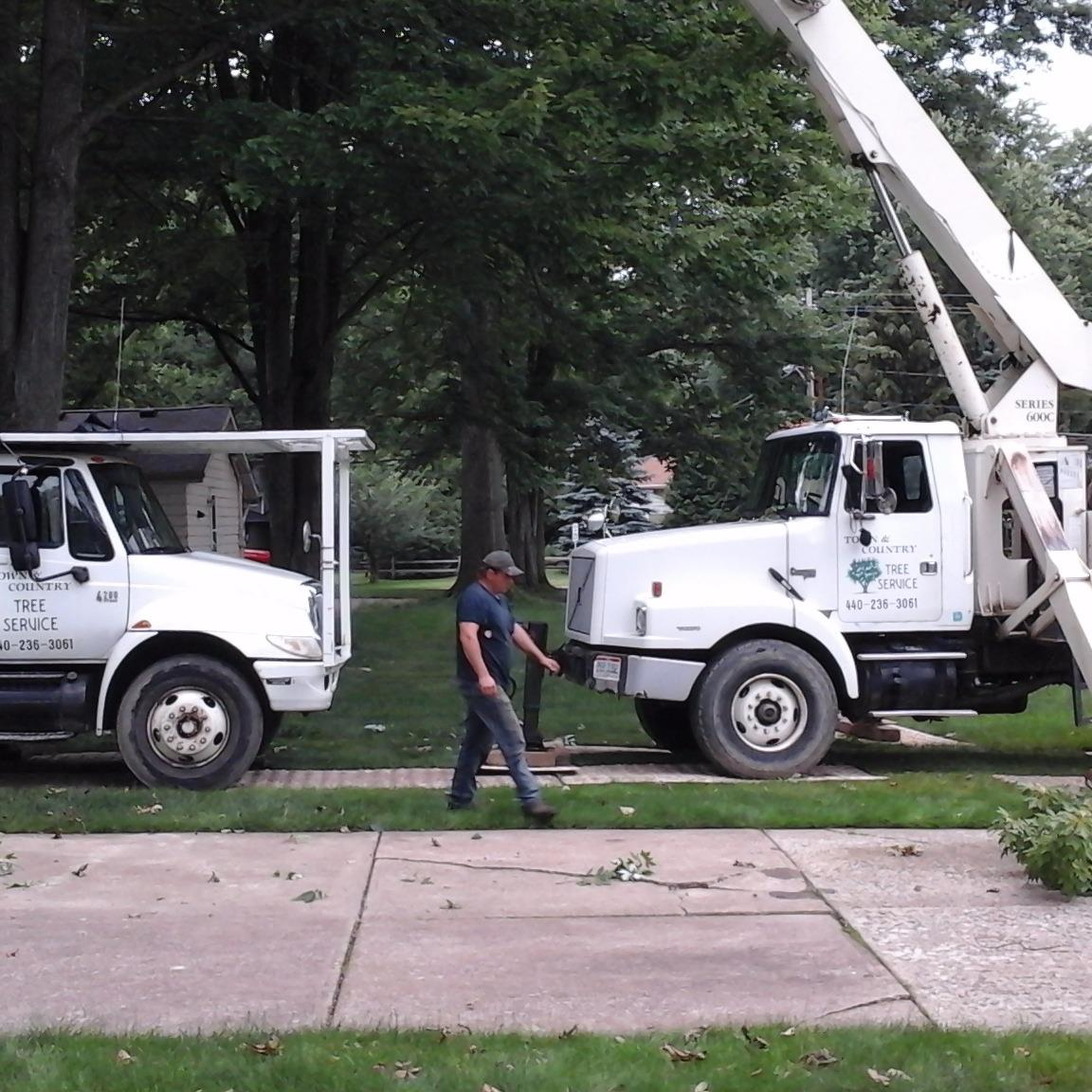 TOWN & COUNTRY TREE SERVICE - Columbia Station, OH - Tree Services