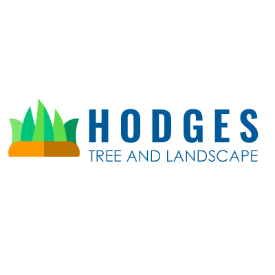 Hodges Tree and Landscape