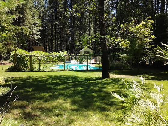 Grace Lake Resort image 2