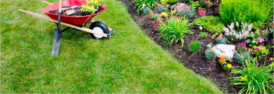 Hometown Lawn & Pest image 1