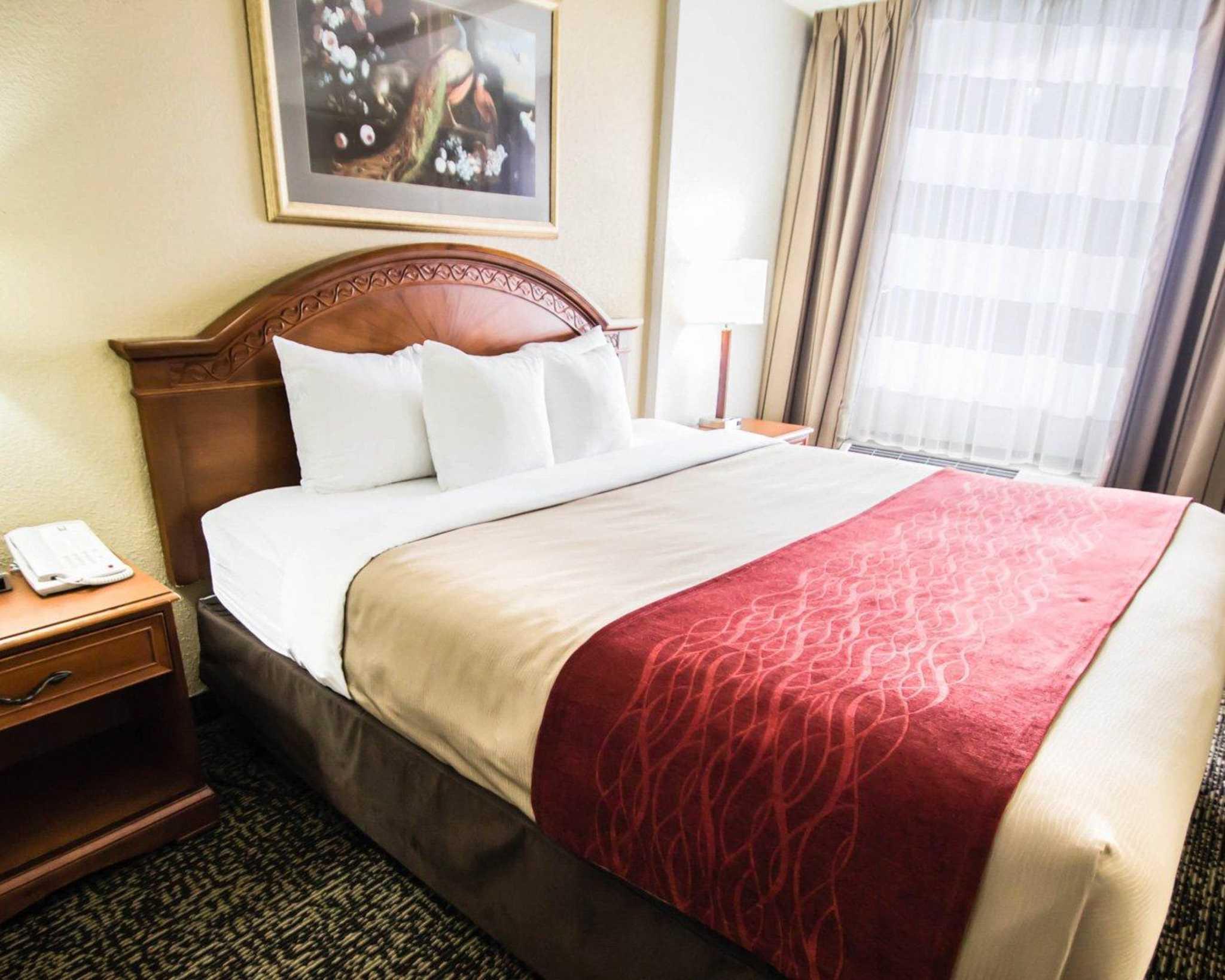 Quality Inn & Suites Winter Park Village Area image 26