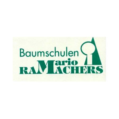 mario ramachers baumschule baumschulen br ggen. Black Bedroom Furniture Sets. Home Design Ideas